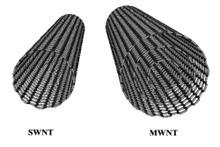Carbon_nanotubes_swnt_mwnt