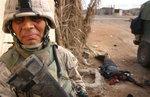 Iraqstink