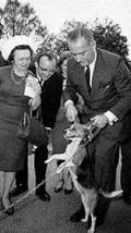 Lyndon_johnson_with_beagles_1