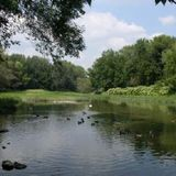Olmsted_park